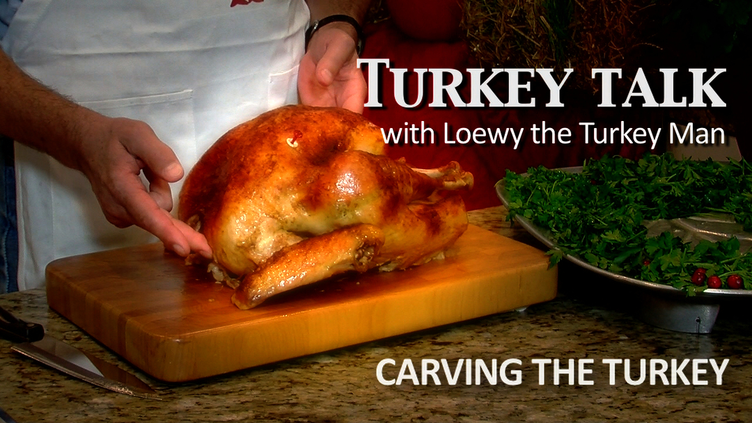 Carving the Turkey #4